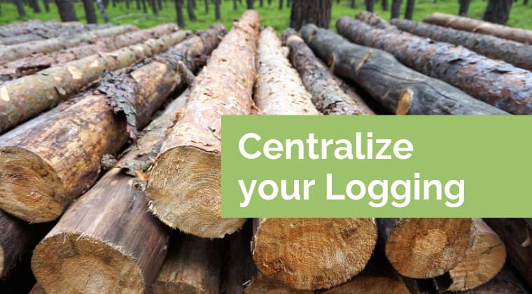 Image of tree logs
