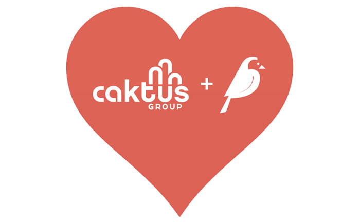 Red heart with the Caktus and Wagtail logos inside
