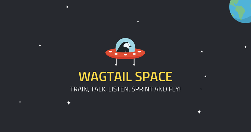 Logo for the Wagtail Space US conference